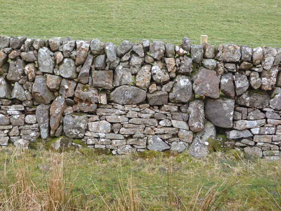 Galloway dry stone wall with mixed rounded and angular stones